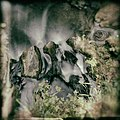 Waldbillig (LU), Schiessentümpel -- 2015 -- 6033 -- 3.jpg