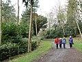 Walkers in Scotscraig estate - geograph.org.uk - 754950.jpg