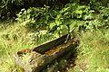 Wanderung durch das Heugrabental zur Schmalkaldenquelle - panoramio (2).jpg