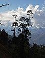 Wangdue Phodrang-24-Landschaft-2015-gje.jpg