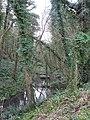 Wannock Glen - geograph.org.uk - 1134029.jpg