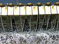 Wasser der Kläranlage Böblingen-Sindelfingen zur Schwippe - panoramio.jpg