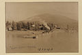 Waterfront, Nakusp, British Columbia (HS85-10-41040).jpg