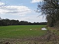Waterlogged field, Beausale - geograph.org.uk - 1769593.jpg