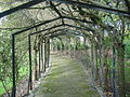 Wavertree Botanic Gardens - DSC00727.JPG