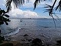 Waves crashing on the jungle beach.jpg