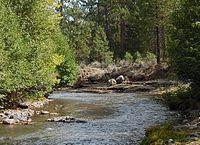 Whychus Creek in Sisters State Park, Oregon.jpg