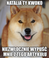 Wikidoge-pl.png
