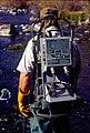 Wild trout project e walker river bridgeport0100 (26002933360).jpg