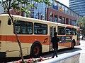 Winnipeg Transit 865.jpg
