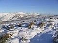 Winter Landscape - geograph.org.uk - 320808.jpg