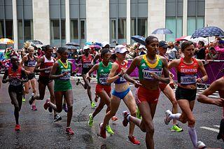 Athletics at the 2012 Summer Olympics – Womens marathon Womens marathon events at the Olympics