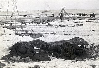 https://upload.wikimedia.org/wikipedia/commons/thumb/5/52/Wounded_Knee_aftermath3.jpg/320px-Wounded_Knee_aftermath3.jpg