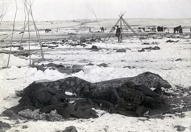 Partially wrapped bodies 3 days after the Wounded Knee Massacre in which approx 300 were killed, about half were women and children.