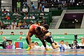 Wrestling at the 2015 European Games 2.jpg
