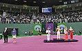 Wrestling at the 2015 European Games 32.jpg