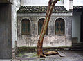Wuzhen Xizha 2009-08.jpg