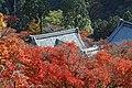 Yoshimine-dera (8255263837).jpg
