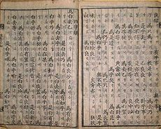 A page from the 19th-century yu seo pil ji.