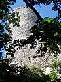 Zamek w Smoleniu1.jpg