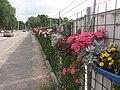Zuidas, Amsterdam, Netherlands - panoramio (14).jpg