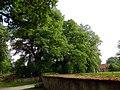 Wetter Linden