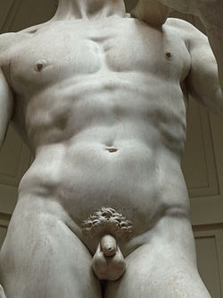 Image result for michelangelo's david