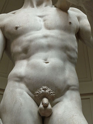 David (Michelangelo) - David, modelling of the marble.