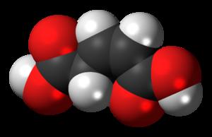 Glutaconic acid - Image: (Z) Glutaconic acid 3D spacefill