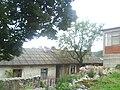 Široki-BR01048.JPG