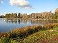 Гатчинский парк. Белое озеро, чайки03.jpg