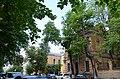 Група вікових дерев береки, Печерський район вул. Банкова,2 02.jpg