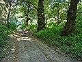 Дорога на Козирщину - panoramio.jpg
