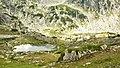 Езеро от Белеметския циркус - panoramio.jpg