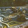 Катаев Ю.К. мозаичный водоем Нептун Фрагмент.jpg