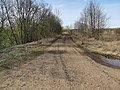 Лесная дорога 6.jpg