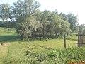 Огородами к речке - panoramio.jpg