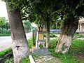 Односельчанам, які не повернулись з Першої світової війни. Історична пам'ятка села Залуква - panoramio.jpg
