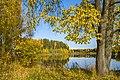 Осень в Рябово.jpg
