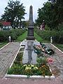 Пам'ятник воїнам-визволителям та односельчанам і партизанці Дітіківській Л.Ф., Борова.JPG