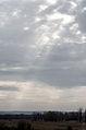 Перші сонячні дні.jpg