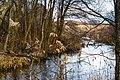 Річка Тартачка (зразу після злиття з р.Іловицею) 03.jpg