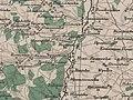 Черняночка (Красный Остров) в 1868 году.jpg