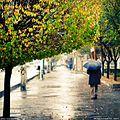 یه روز بارونی پاییزی - panoramio.jpg