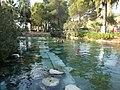 パムッカレの遺跡温泉プール - panoramio - mayatomo.jpg