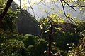 丹霞山风光 - panoramio.jpg