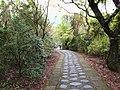 仁山步道 Renshan Trail - panoramio.jpg