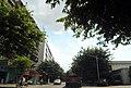 广东省江门市S271公路景色 - panoramio (7).jpg
