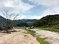 新丰司茅坪林场20150412 - panoramio (89).jpg