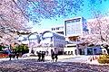 桐蔭学園高校.jpg
